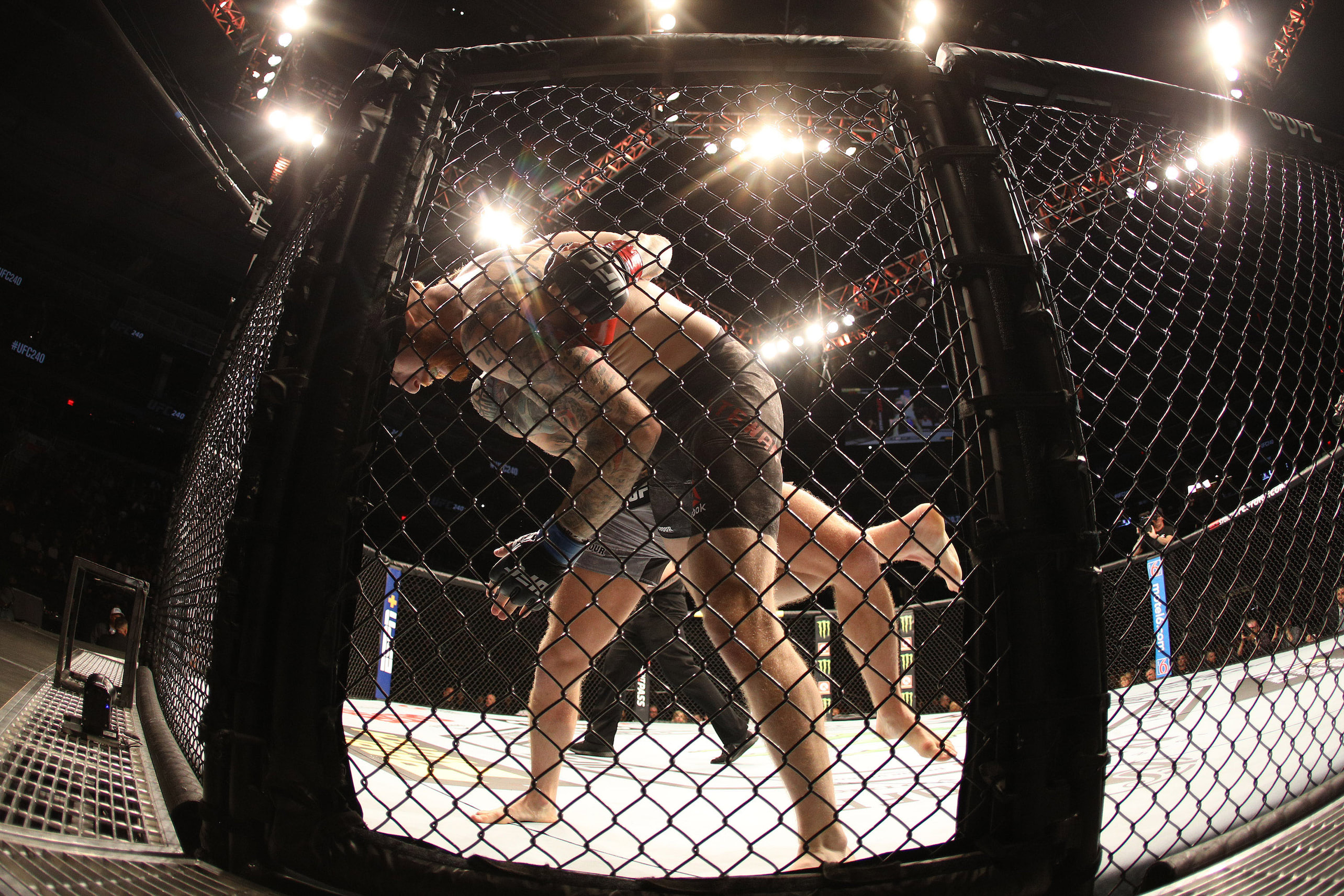 GALLERY: UFC 240   Rogers Place